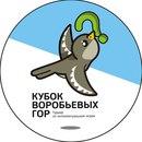 Кубок Воробьевых гор: 7-8 классы
